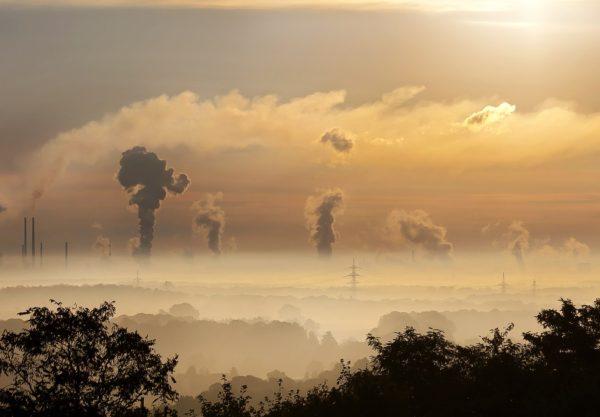 Smog – jak wpływa na zdrowie?